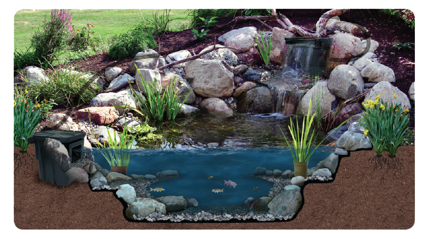 Backyard koi pond kits design and ideas for Backyard pond supplies
