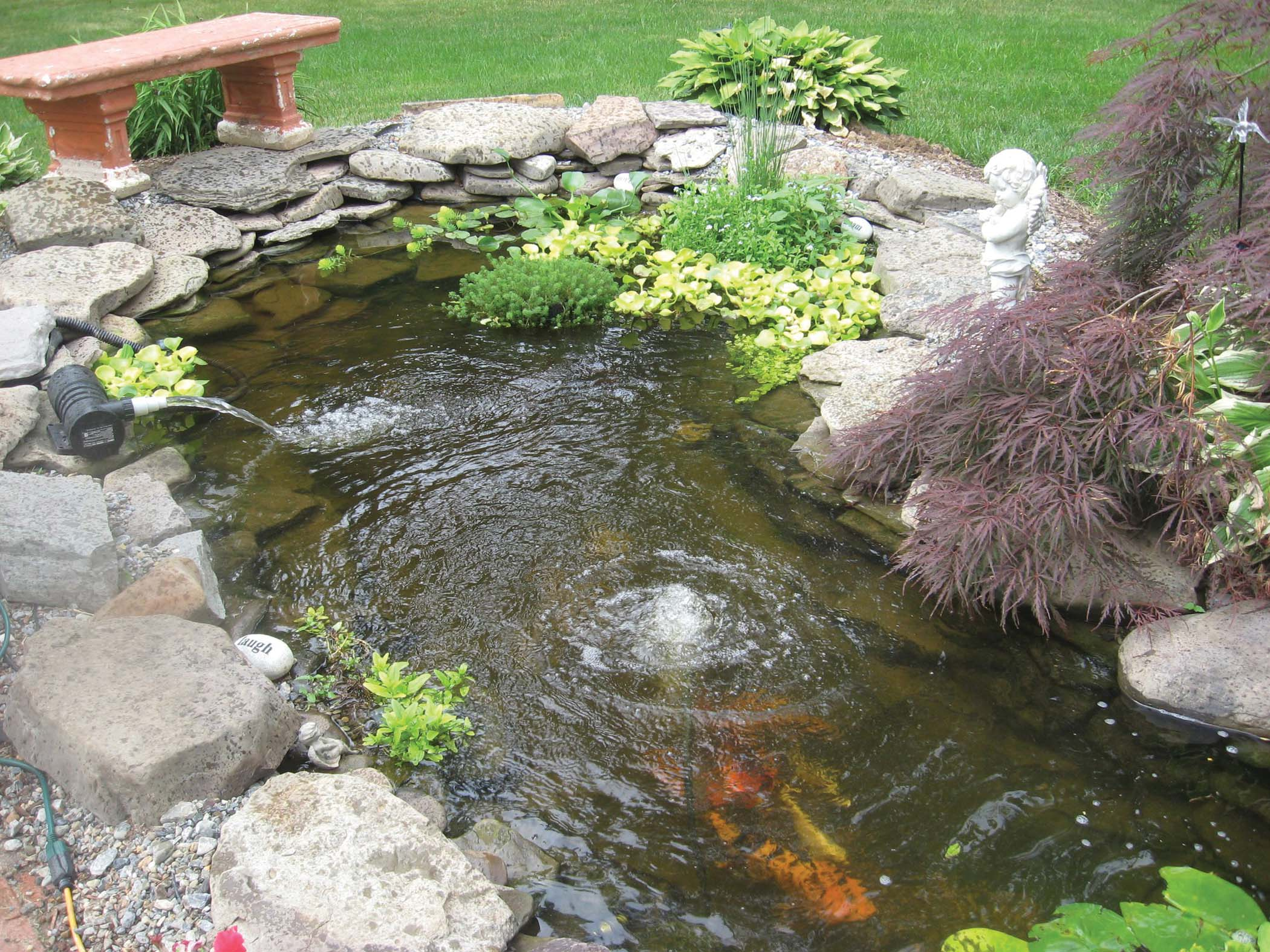 backyard pond kits home depot