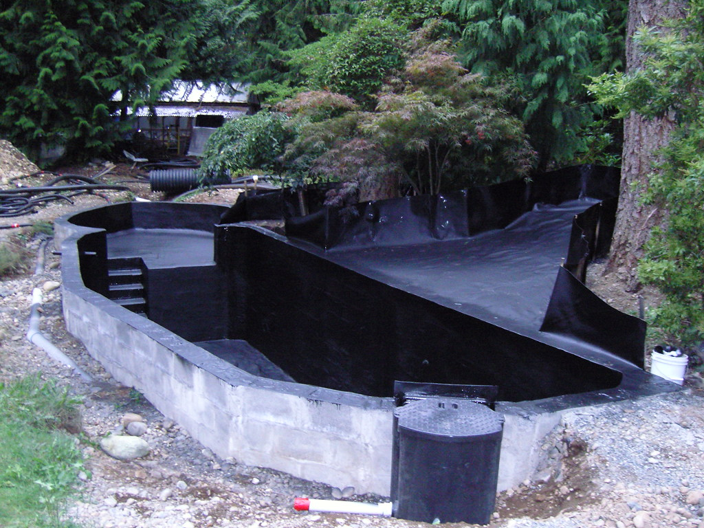 Backyard koi pond kits design and ideas for Cheap pond ideas