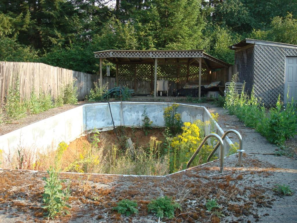 Backyard Renovations Show Design And Ideas