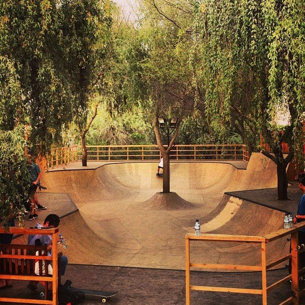 best backyard skatepark ever