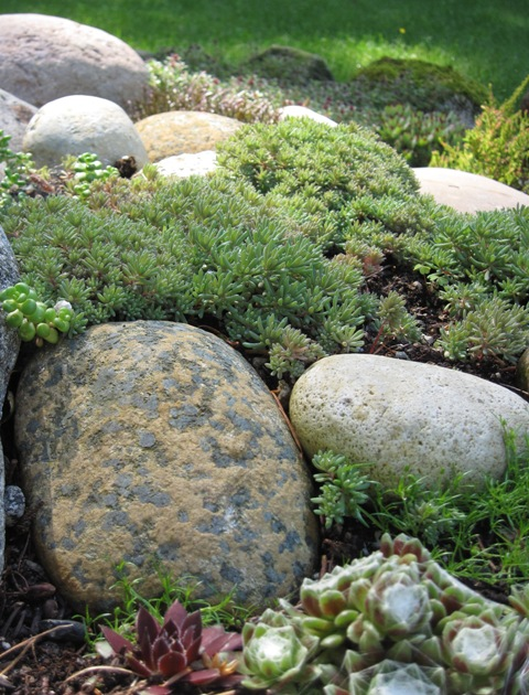 big rock landscaping ideas  photo - 3