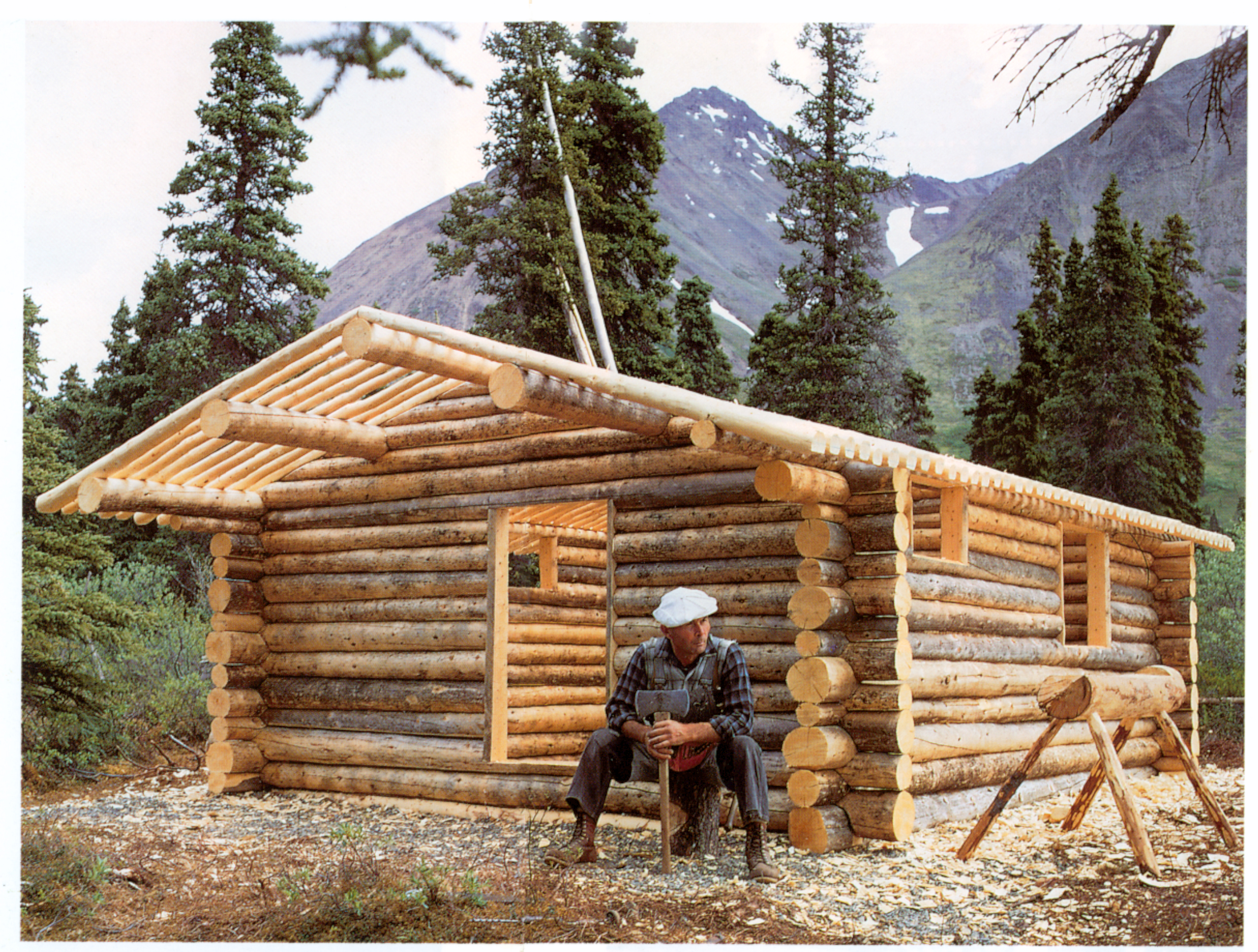 build a cabin kit design and ideas build a cabin in alaska