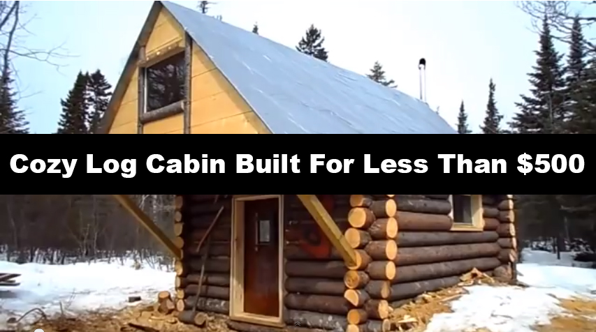 build a cabin alaska design and ideas