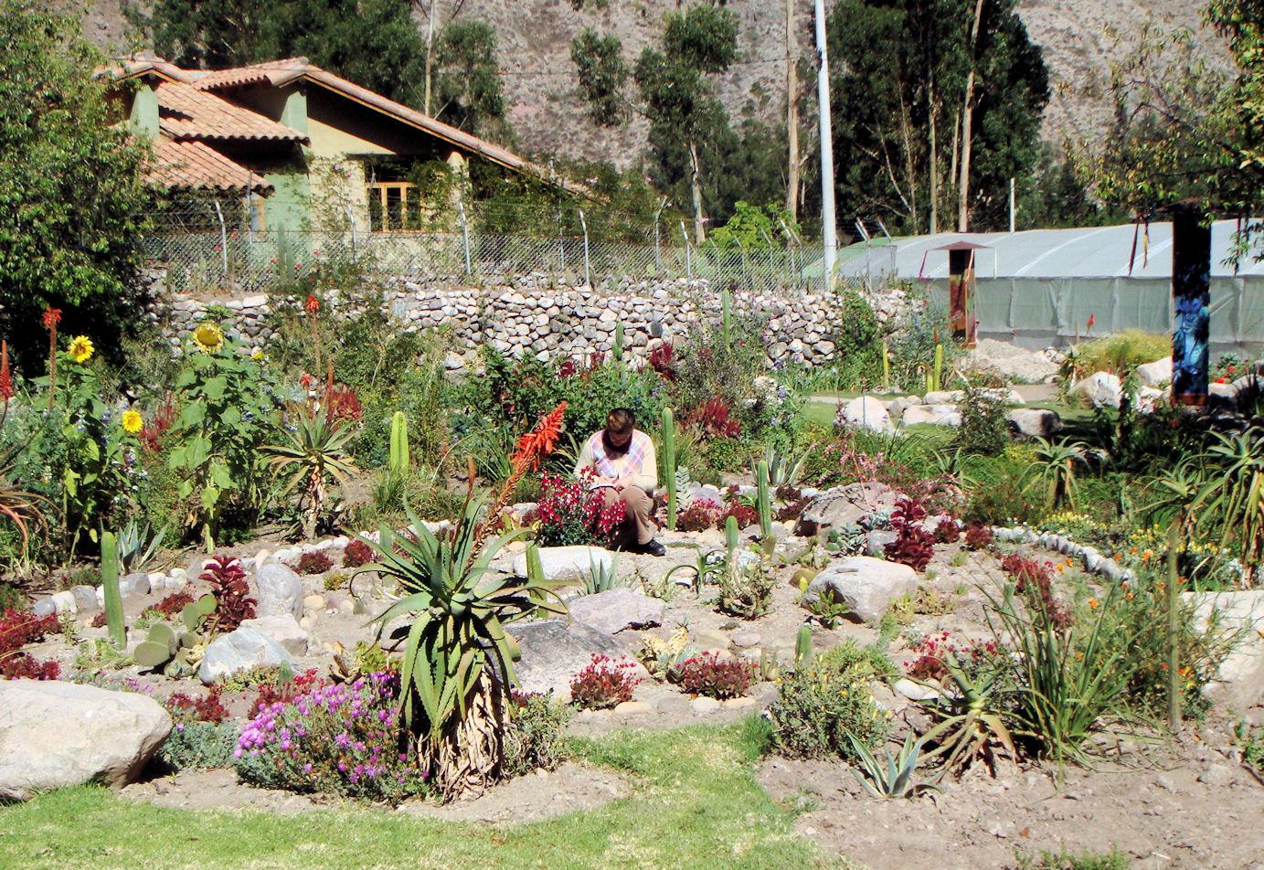 Cactus Garden Design And Ideas