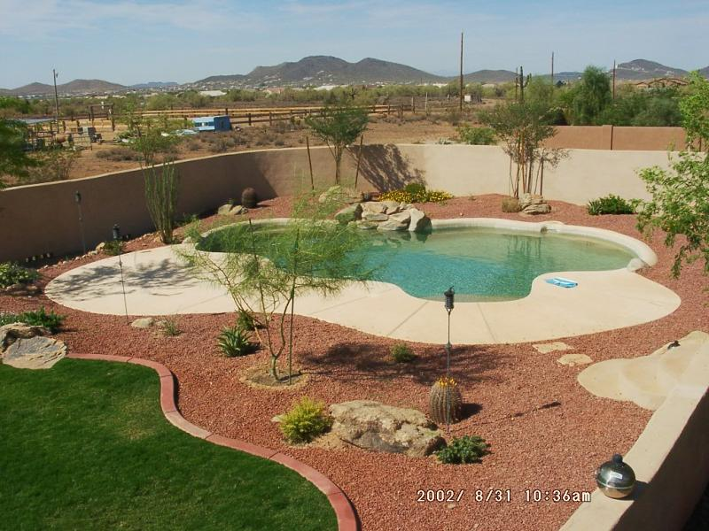 desert landscaping around pool Design and Ideas