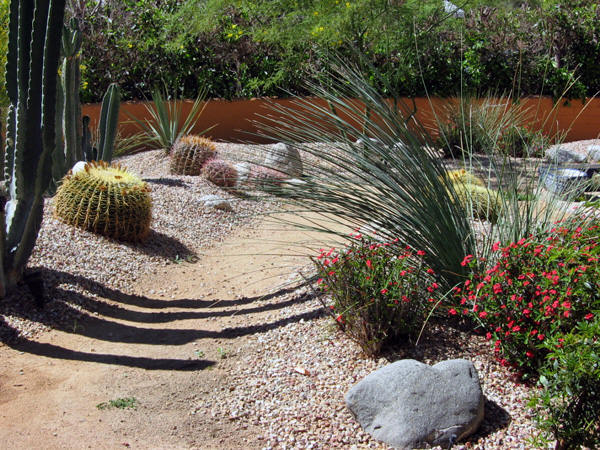 Desert Landscaping Designs Design And Ideas