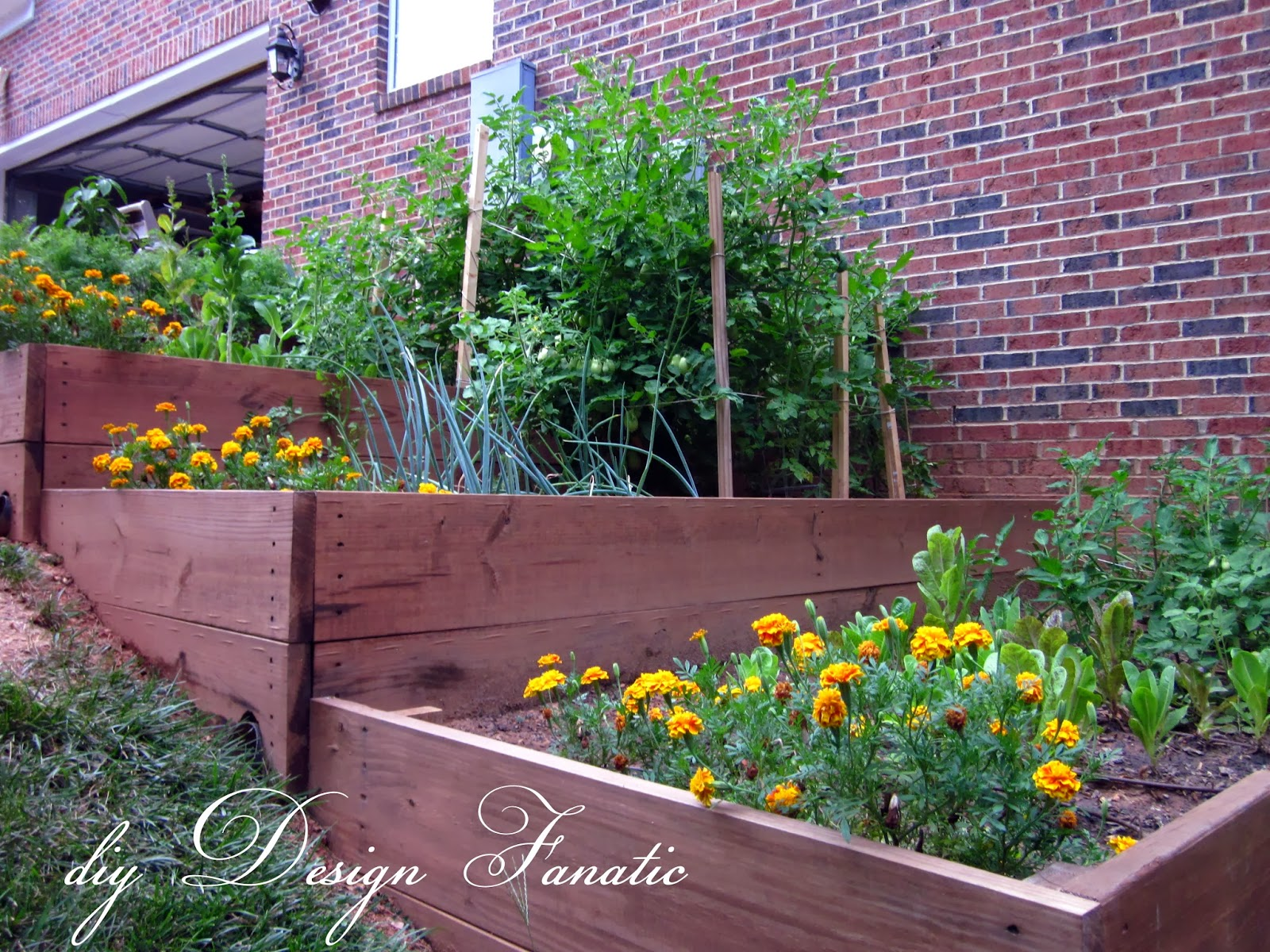 diy landscaping a slope  photo - 1