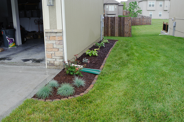 Diy Landscaping Projects