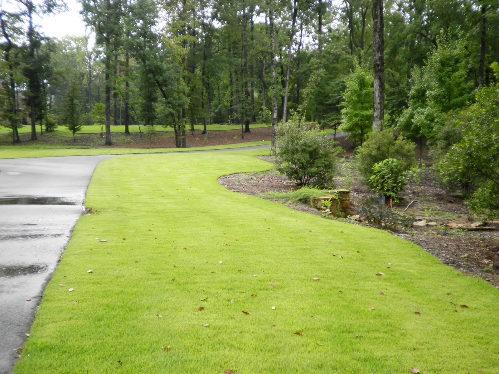 Driveway Landscaping Pictures Design And Ideas