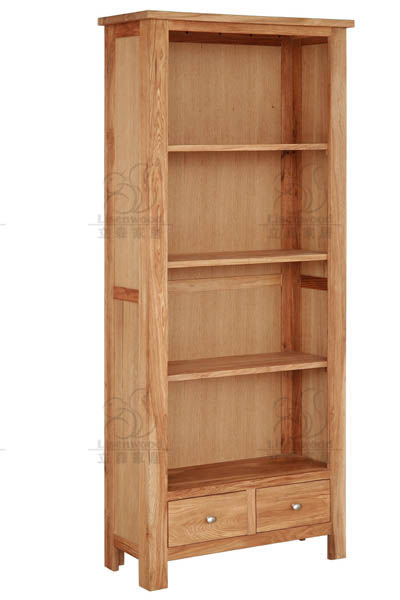 Eco House Living Room Bookcase