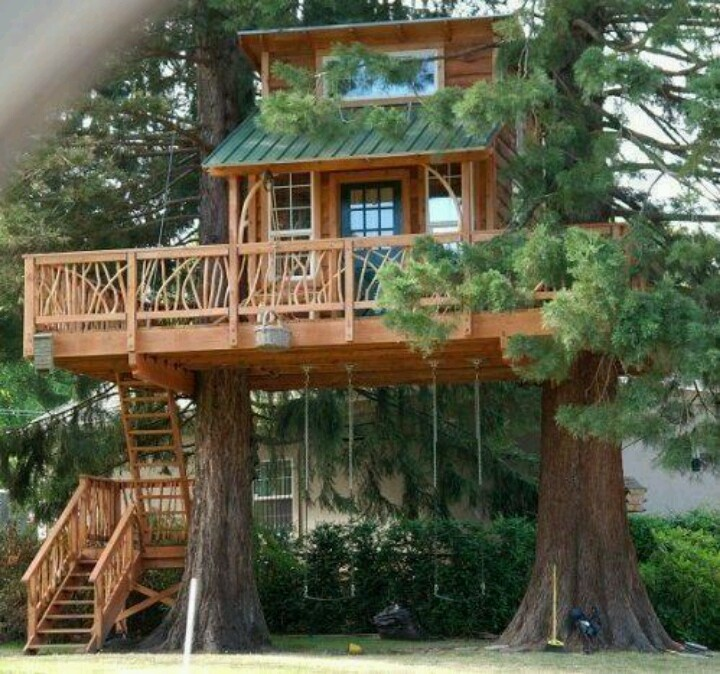 Eco TreeHouse