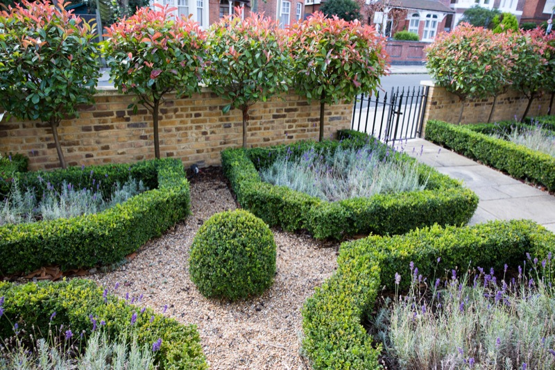 Front Garden Hedge Ideas - Garden Design Ideas
