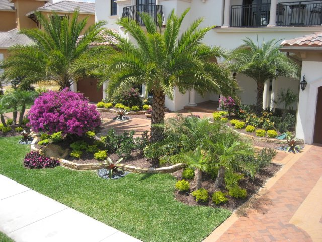 Front Yard Landscaping Ideas Florida Part - 37: Front Yard Landscape Ideas Florida