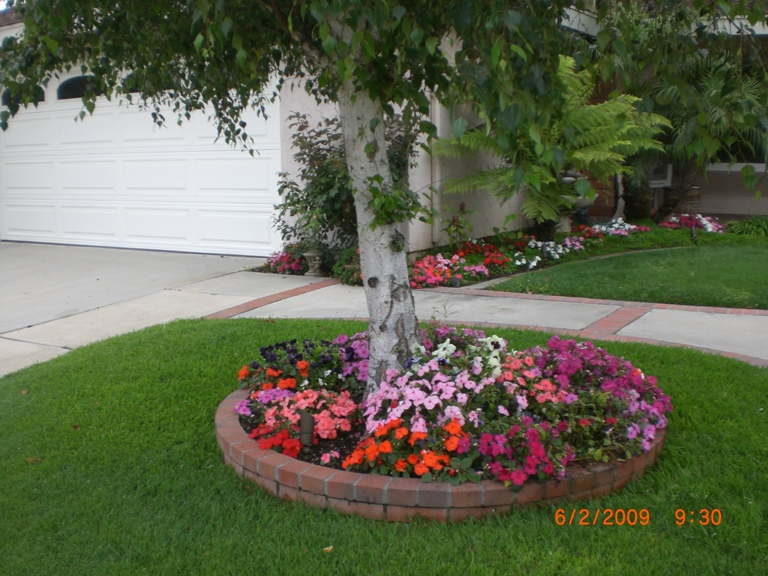 Rock Landscaping Under Trees : Front yard landscaping ideas around trees ? design and