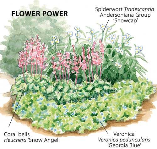 Garden 187 Page 9