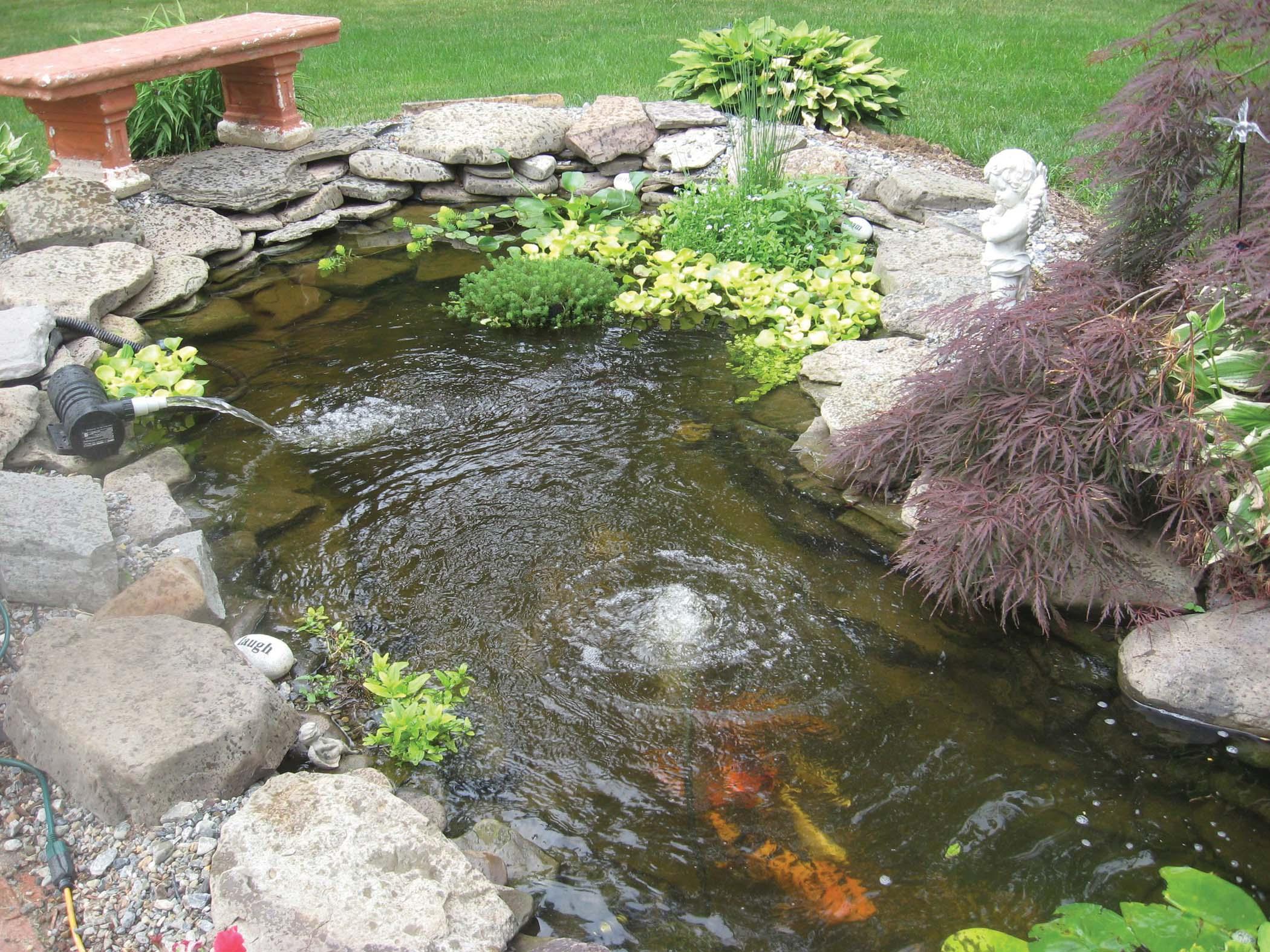garden pond kit design and ideas