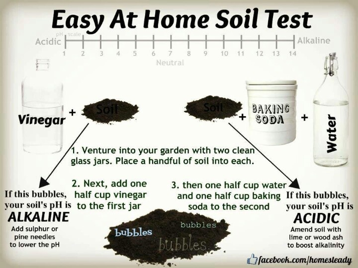 Garden Tools Soil Testers photo - 1