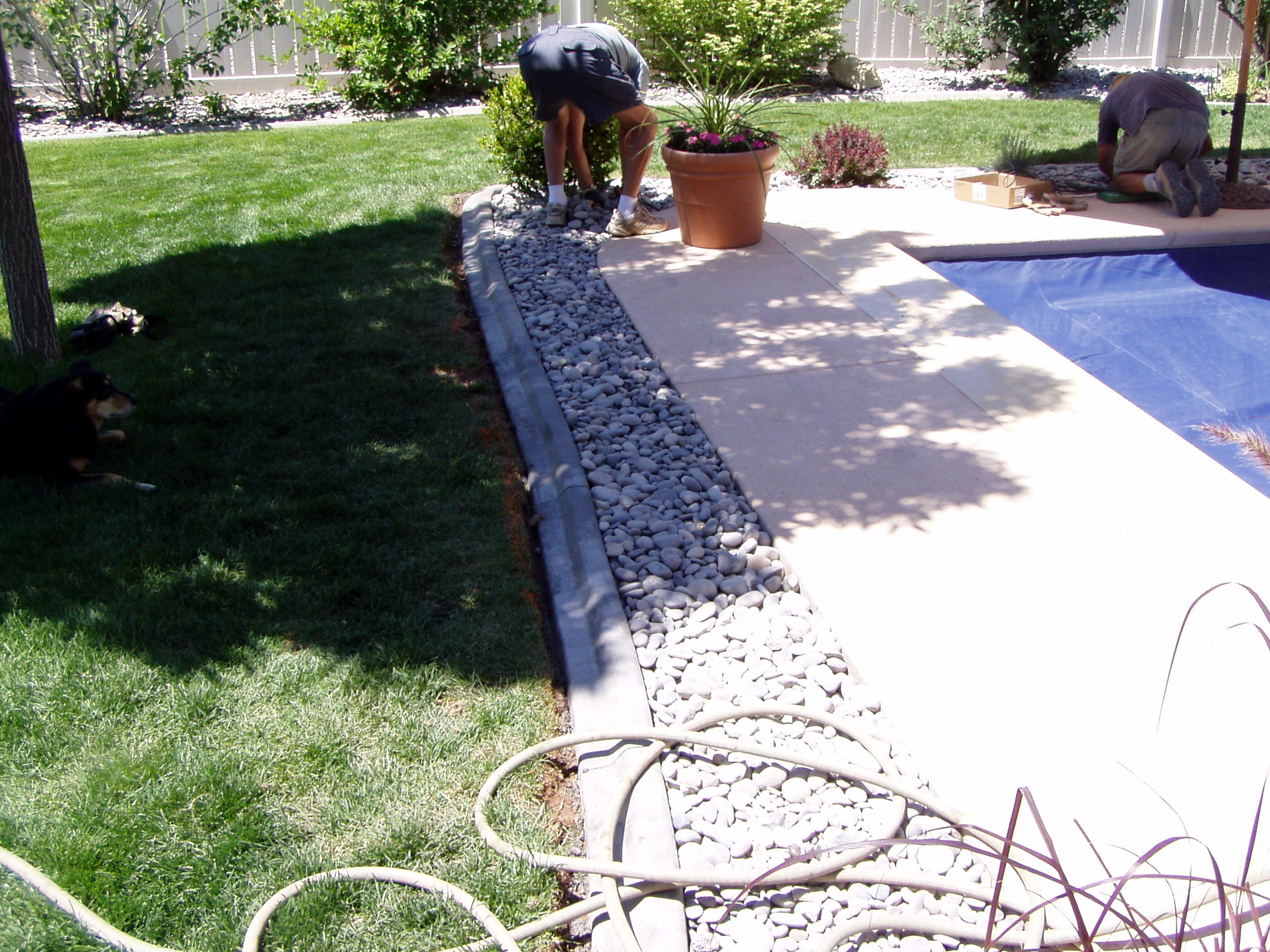 Cheap landscape rocks around pool delectable 141 best my Cheap pool landscaping ideas