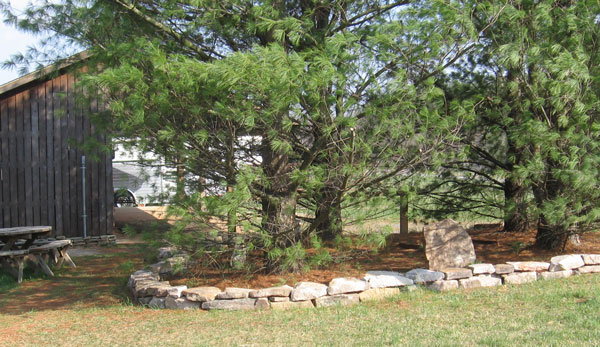 Landscaping With Rocks Around Trees : Landscaping with rocks around trees ? design and ideas