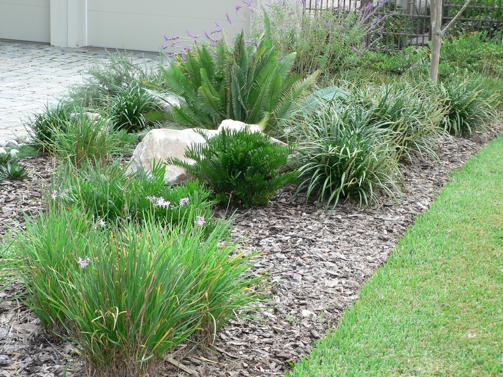Low maintenance landscaping florida design and ideas for Modern low maintenance plants