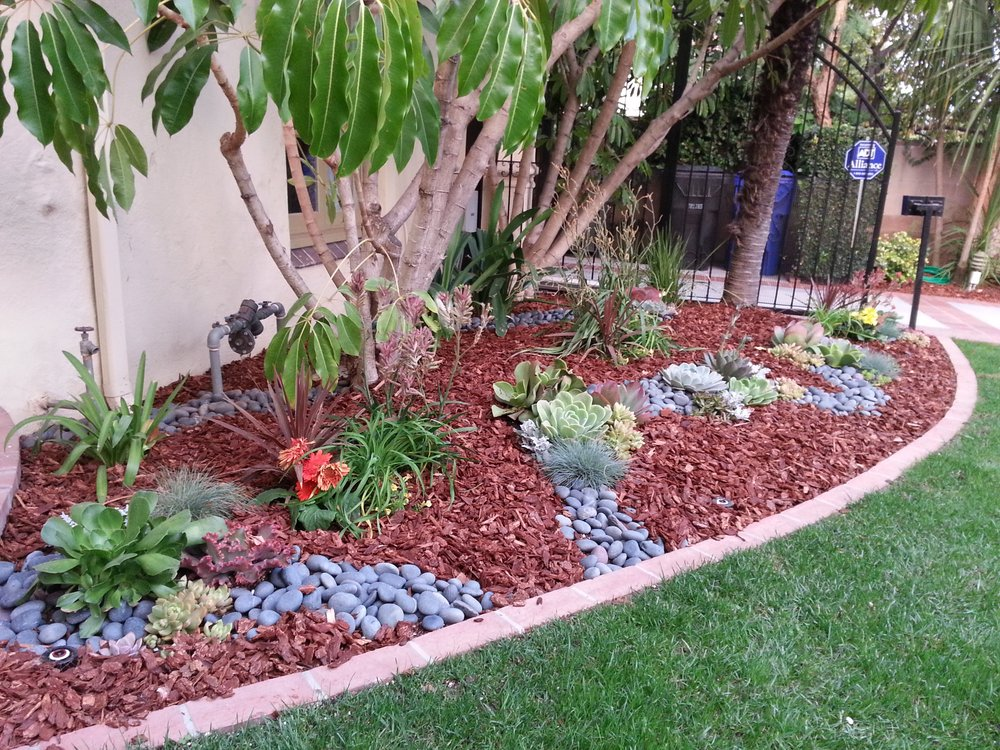 low maintenance landscaping los angeles  photo - 3