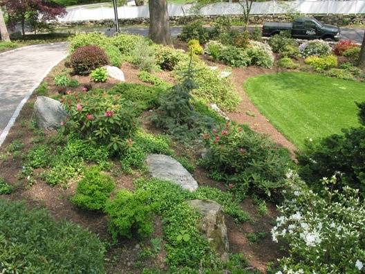 low maintenance landscaping on a slope  photo - 1