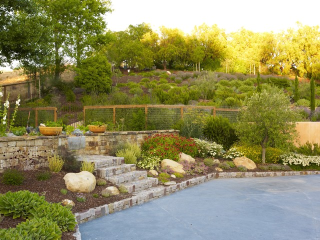 low maintenance landscaping on a slope  photo - 3