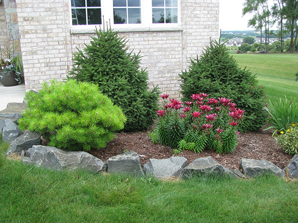 rock border landscaping ideas  photo - 2