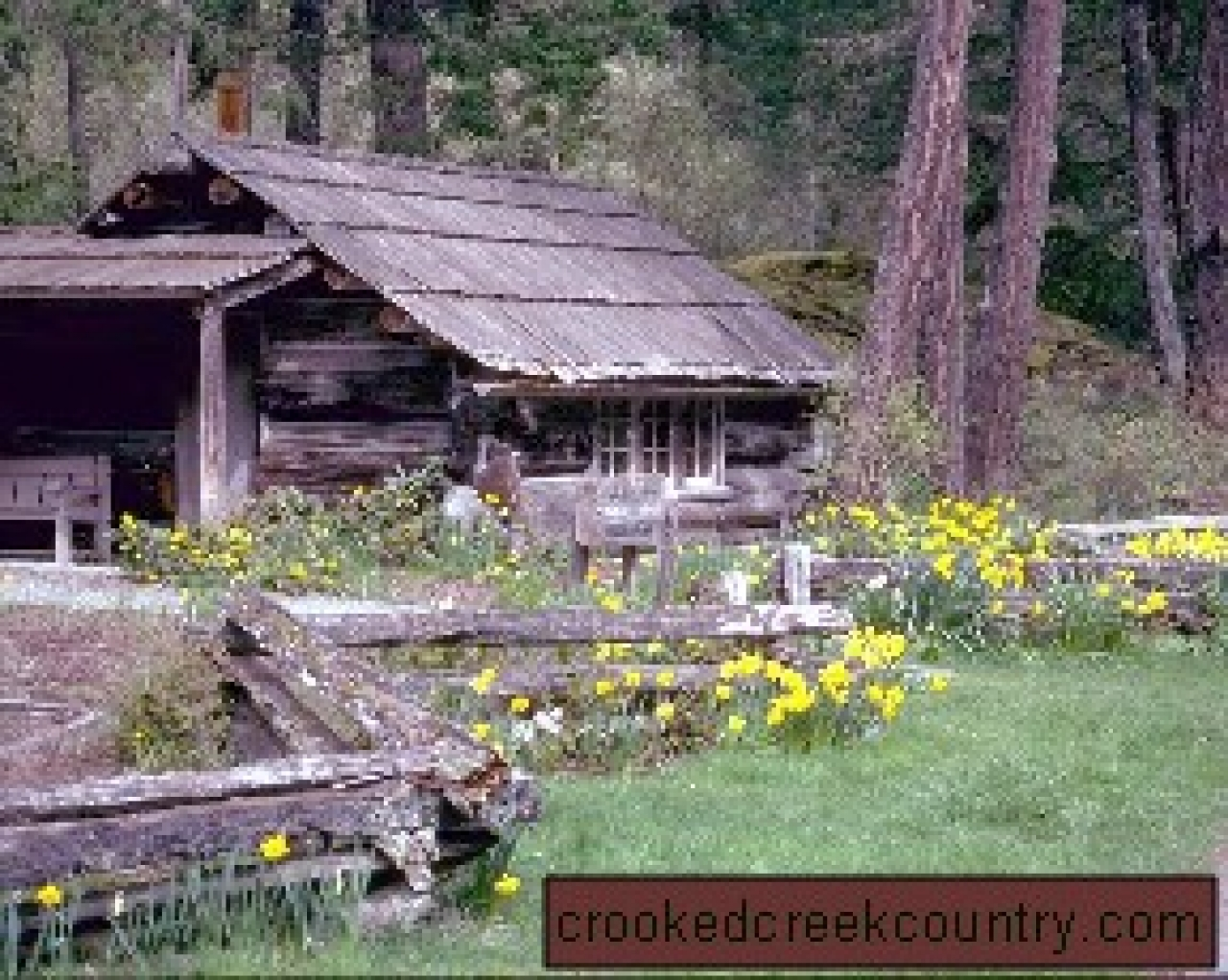 Rustic log cabin accessories design and ideas for Log cabin art
