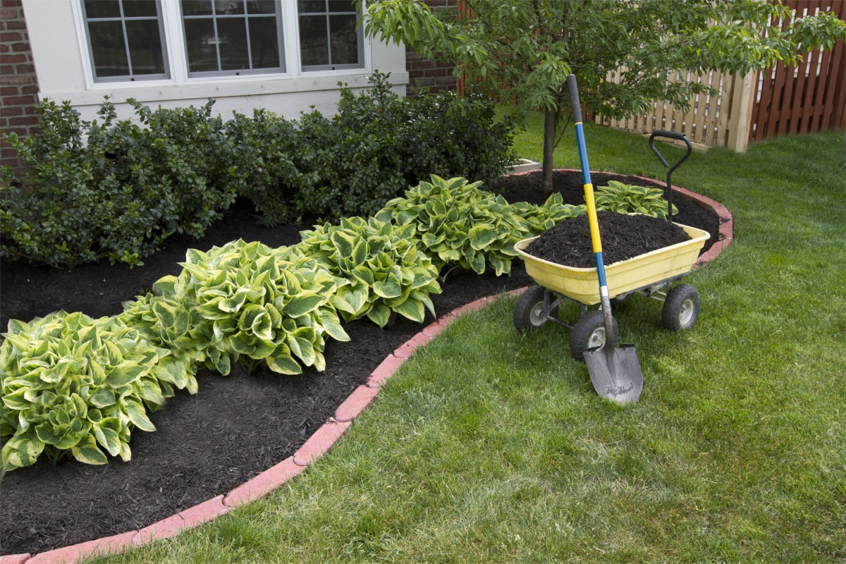 Simple Landscaping Ideas For Around The House Photo