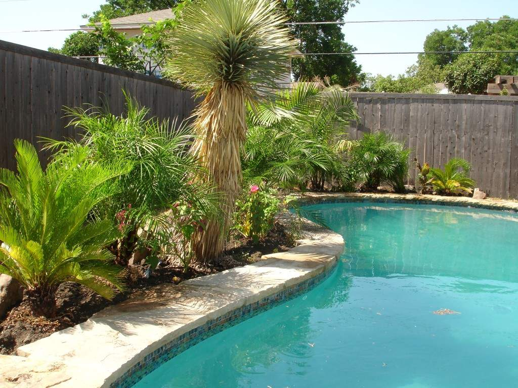 simple landscaping ideas for pool area
