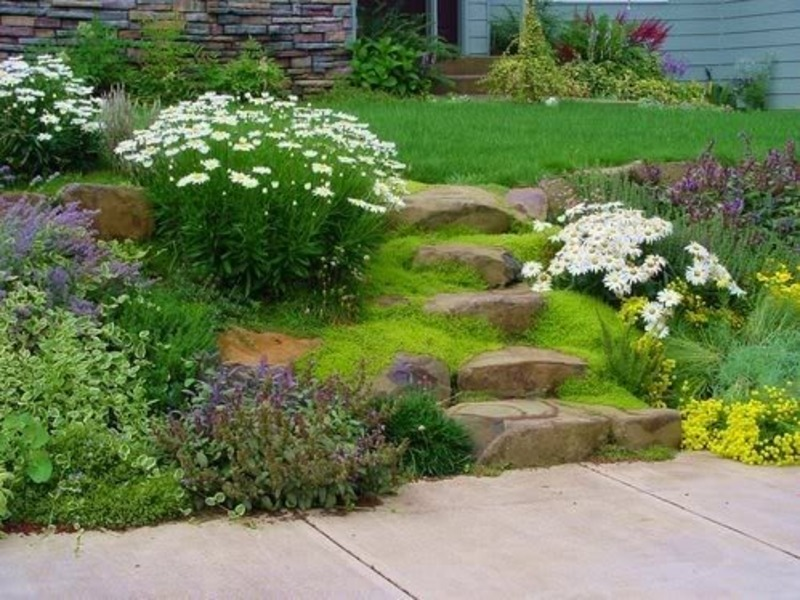Simple Landscaping Ideas For Small Yards Design And Ideas
