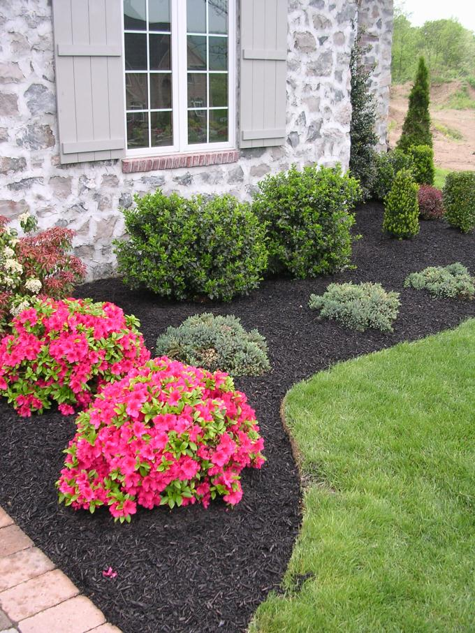simple landscaping ideas using mulch  photo - 2