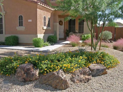 Small backyard desert landscaping ideas design and ideas for Small yard desert landscaping