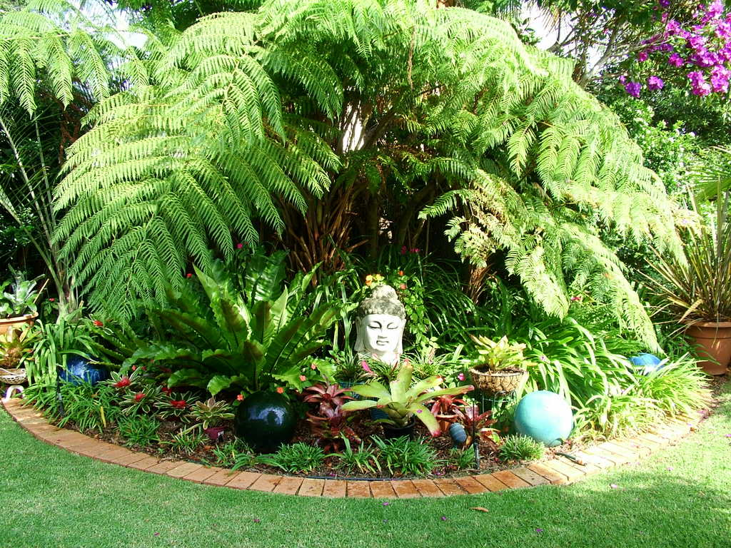 Tropical Garden Ideas Brisbane plain tropical garden ideas brisbane backyard r with design