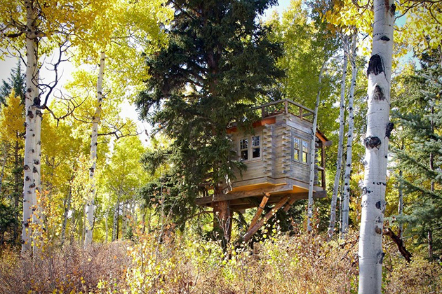 treehouse cabins colorado  photo - 1