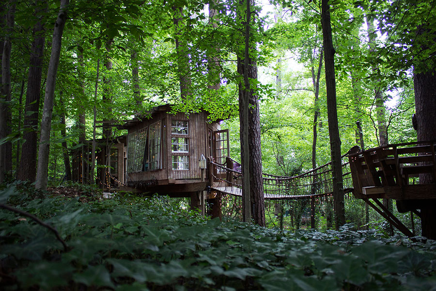 treehouse cabins in georgia  photo - 1