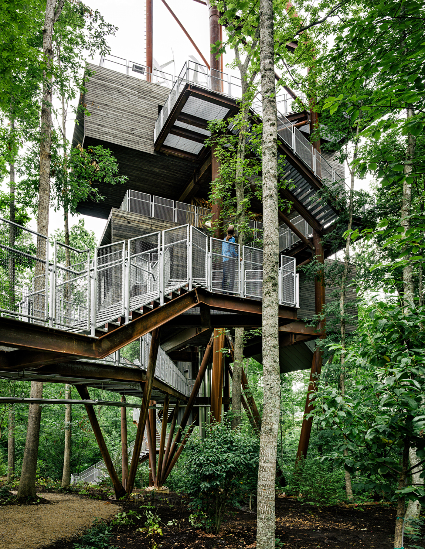 Treehouse cabins arizona design and ideas for Treehouse cabins aurora ny