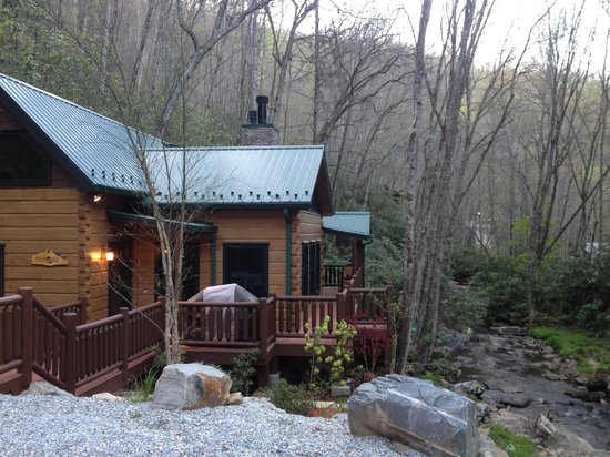 Treehouse Cabins Nc  photo - 1