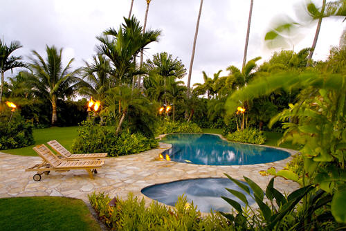 tropical landscaping ideas for backyard  photo - 1