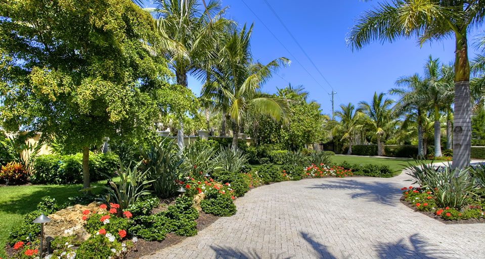 tropical landscaping in florida