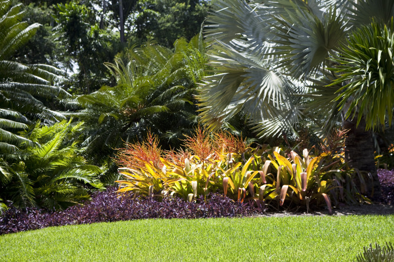 Tropical Landscaping Pictures