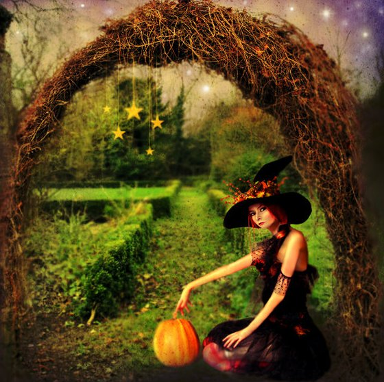 Witches Garden 187 Design And Ideas